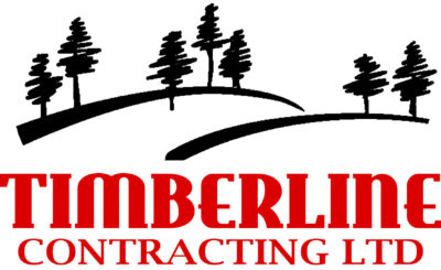Timberline orginal logo Andrea